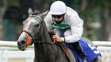 Alpinista and Ryan Tate on the way to success at Salisbury in August