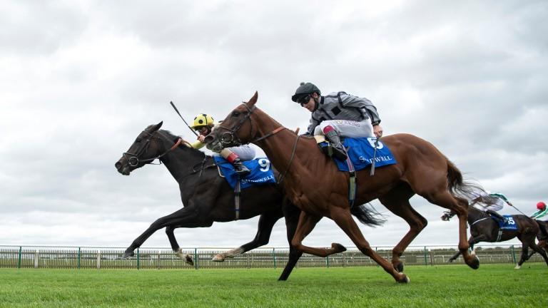 Cloak Of Spirits (Andrea Atzeni,9) beats Bounce The Blues (Oisin Murphy) in the Tasleet British EBF Rosemary StakesNewmarket 25.9.20 Pic: Edward Whitaker/Racing Post