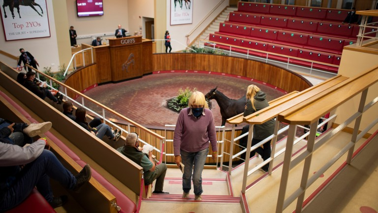 Covid-19 precautions in effect in Doncaster during the Goffs UK Premier Yearling Sale