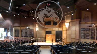 Scenics 2020 Fasig-Tipton Selected Yearling Sale in Lexington KY