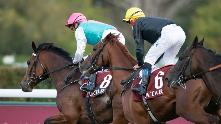 Enable and Stradivarius finish unplaced in the Arc with the ground and pace to blame