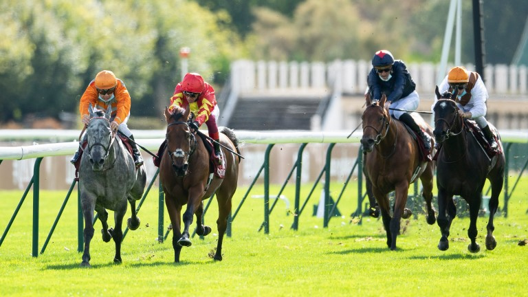 Patrick Sarsfield (red): runner-up in Group 2 company last year