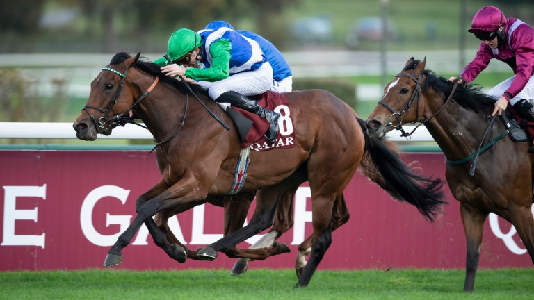 One Master: won her third Prix de la Foret at Longchamp on her most recent start