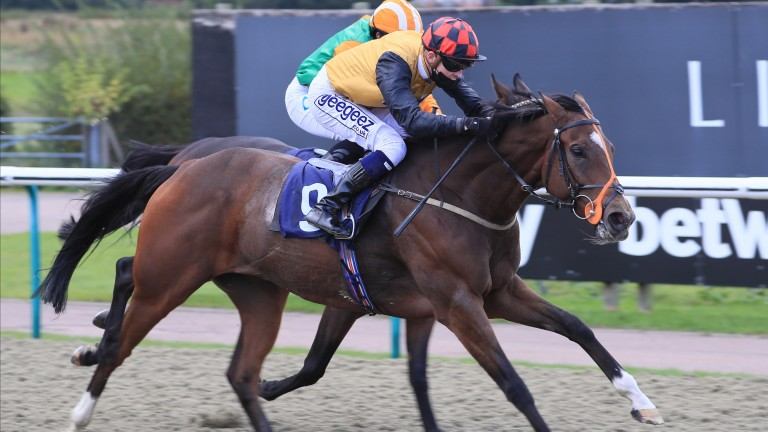 Accomplice: Lingfield ace has recently been retired