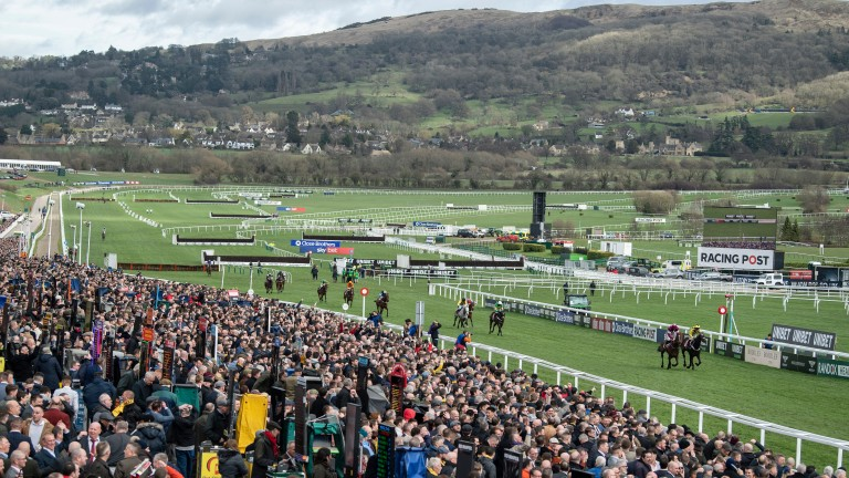 The Cheltenham Festival is a punting mass where people can spend more than £100 a day on bets