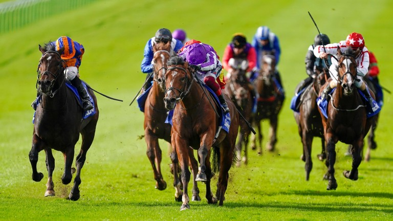 St Mark's Basilica leads home a Ballydoyle one-two in the Dewhurst