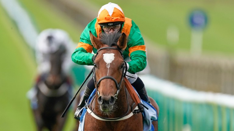 Lone Eagle: heading to the Curragh