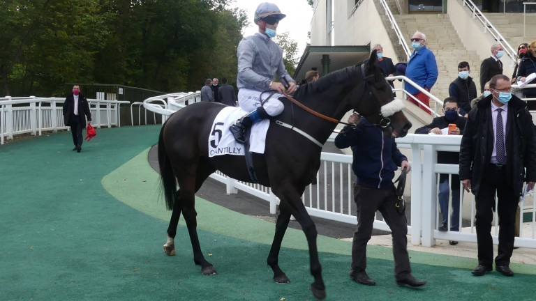 Last Empire: one filly who will be suited by testing conditions