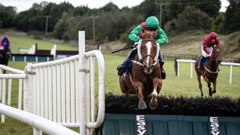 My Sister Sarah: finished second in this race last year for trainer Willie Mullins