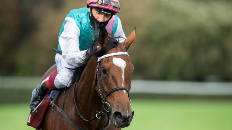 Enable: winner of the Cheshire Oaks in 2017
