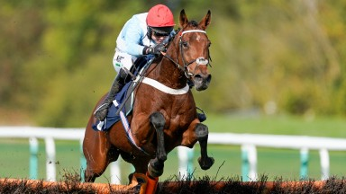 HUNTINGDON, ENGLAND - OCTOBER 13: Nico de Boinville riding Vegas Blue clear the last to win The Bet 10 Get 20 With MansionBet Mares' Maiden Hurdle at Huntingdon Racecourse on October 13, 2020 in Huntingdon, England. Owners are allowed to attend if they ha