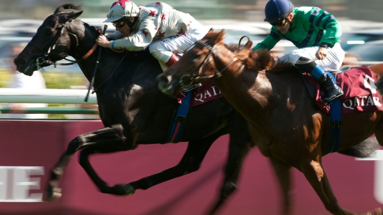 Dabirsim was the last French-trained horse to be crowned Europe's champion two-year-old back in 2011