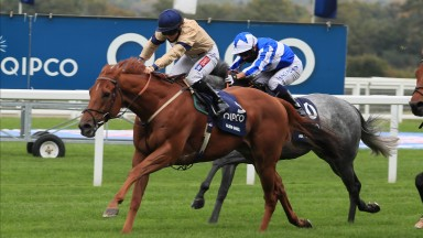 Glen Shiel -Hollie Doyle wins The Qipco British Champions Sprint Stakes (Group 1) (British Champions Series) Ascot  17.10.20Racing behind closed doors due to the Covid-19 pandemic. ©mark cranhamphoto.com