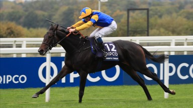 Wonderful Tonight: a brave winner of the Qipco British Champions Fillies & Mares Stakes