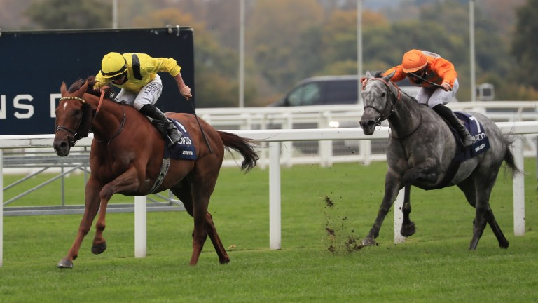 Addeybb produces a scintillating display in the Champion Stakes