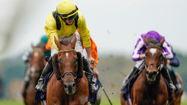 Addeybb: one of two Group 1 winners for Pivotal at Ascot on Saturday