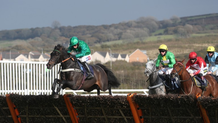 Sceau Royal is in good form over hurdles