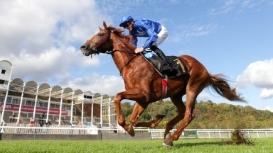 Act Of Wisdom ridden by James Doyle wins The Bet 10 Get 20 With MansionBet British EBF Nursery at Nottingham Racecourse on October 7, 2020 in Nottingham, England. (Photo by David Davies - Pool/Getty Images)