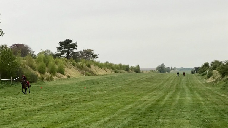 The Between the Ditches gallop was supposed to be a secret location