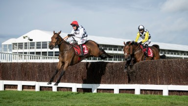 Galvin with another fine leap under Robbie Power