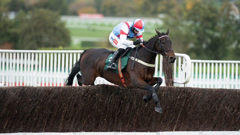 Rouge Vif: decent ground a plus for Champion Chase contender