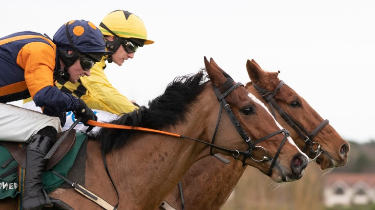 All about survival: Melon and Paul Townend (far side) narrowly defeat Gallant John Joe and Barry Browne in a beginners' chase at Leopardstown after surviving a last-fence blunder