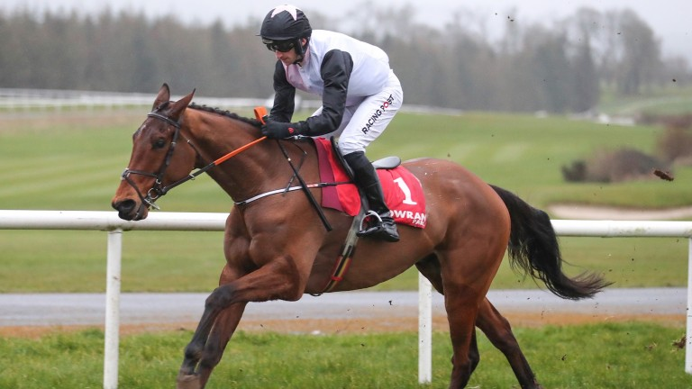 Gowran bumper winner Bob Olinger looks a very exciting recruit to novice hurdling