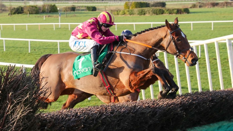 Minella Indo: returns in the feature Grade 3 chase at Wexford on Monday