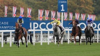 Trueshan and Hollie Doyle have their pursuers chasing in vain as they win the Long Distance Cup on Champions Day