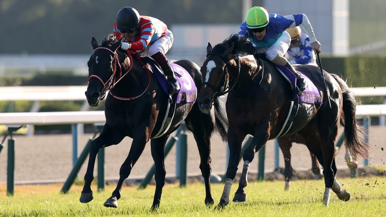 Contrail (left) holds off Aristoteles to emulate sire Deep Impact's Triple Crown triumphs of 15 years earlier