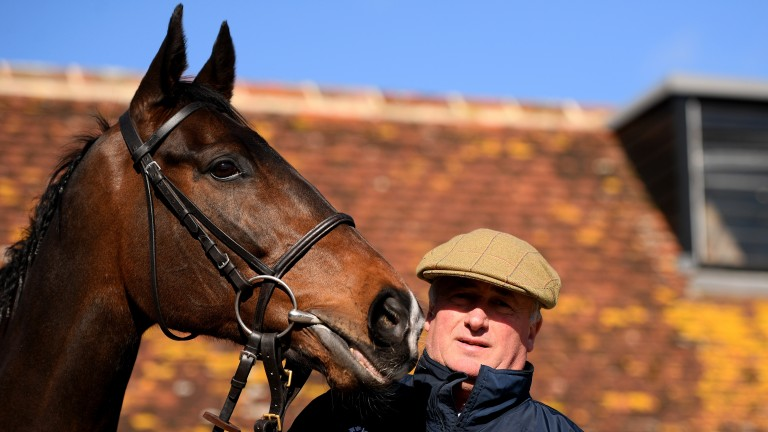 Paul Nicholls with Frodon: one of two who really took the trainer's eye in a workout at Wincanton