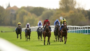 LEICESTER, ENGLAND - OCTOBER 26: Baileys Afterparty (right) ridden by Jack Mitchell wins the Cossington EBF Fillies' Novice Stakes at Leicester Racecourse on October 26, 2020 in Leicester, England. (Photo by Tim Goode - Pool/Getty Images)