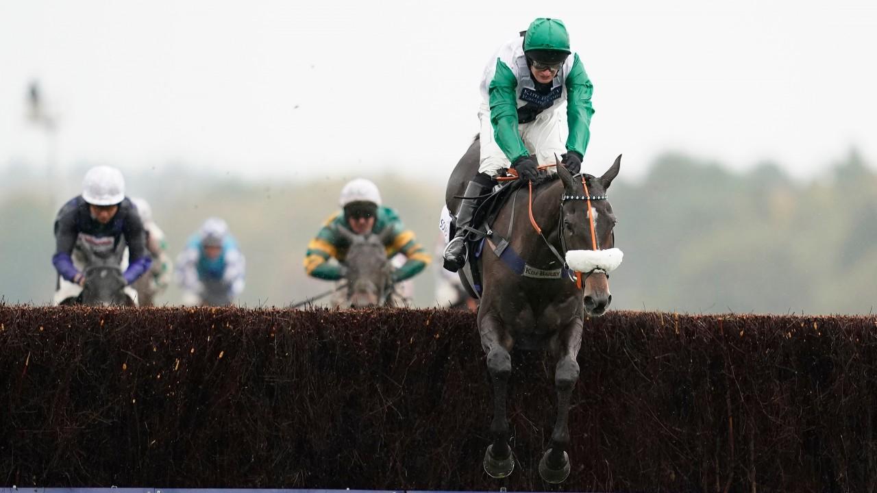 Racing post trophy betting odds betting cheltenham