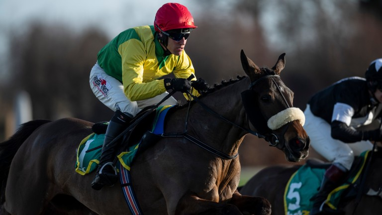 Magic Of Light: top Irish raider has won the Grade 2 Matchbook Betting Podcast Mares' Hurdle for the last two years