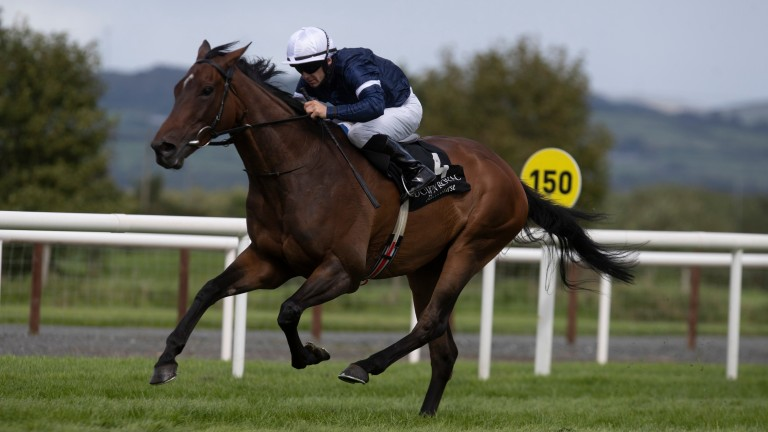 Master Of Reality: landed the Listed feature at Down Royal on Friday
