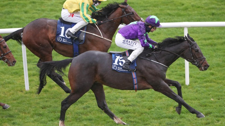Taipan: tries a mile and six furlongs for the first time