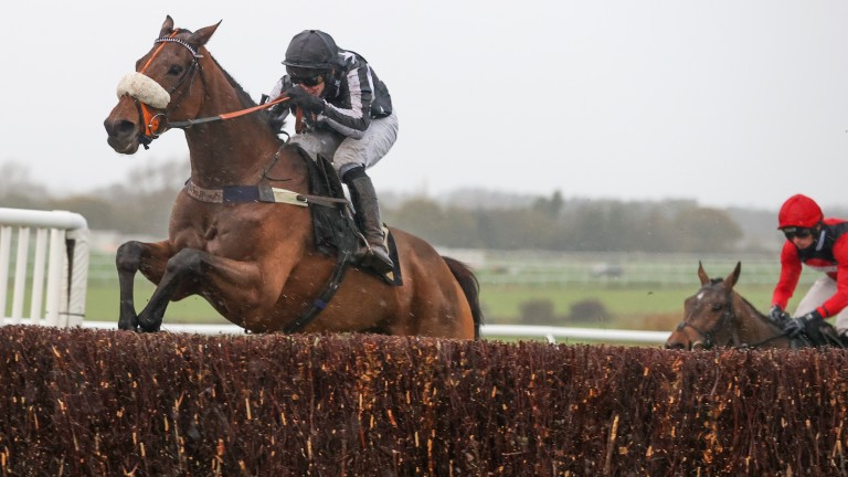 Imperial Aura: a chaser on the up and well fancied at Ascot on Saturday
