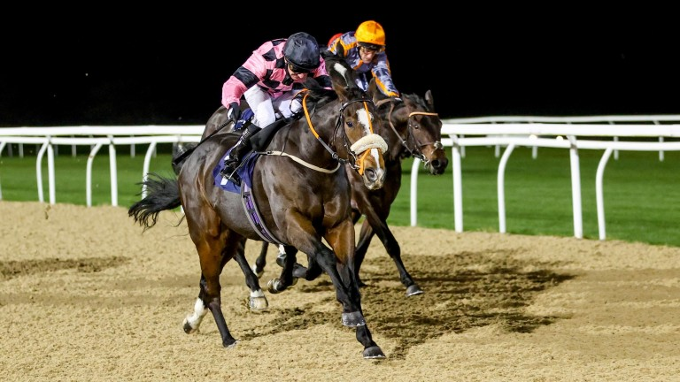 Paul Hanagan hits the front aboard Anif to claim his 2,000th win