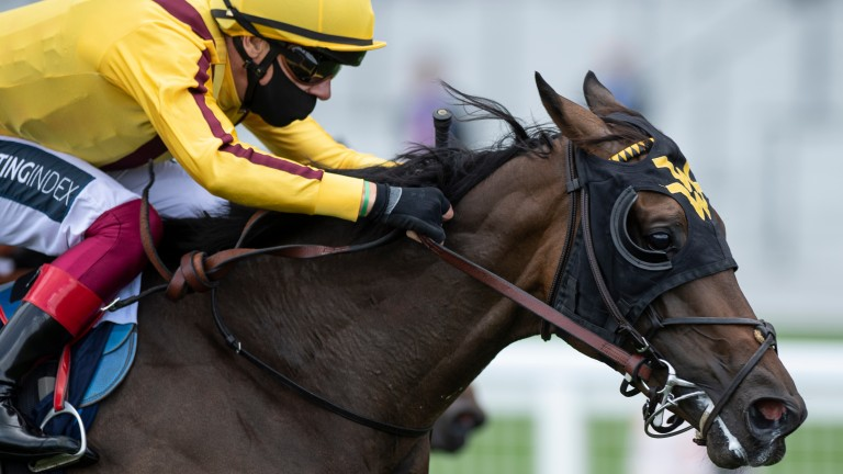 Campanelle: already a Royal Ascot winner after landing last year's Queen Mary Stakes