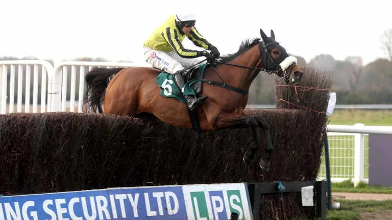 Allmankind: sole runner of the day for Dan Skelton in the Henry VIII Novice Chase at Sandown