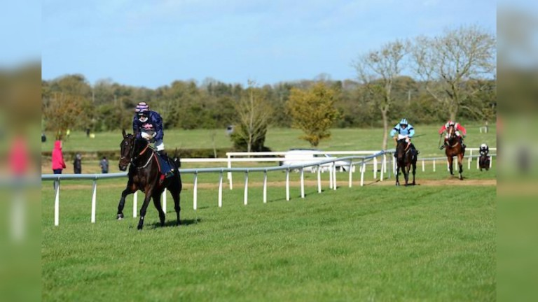 Ginto strolls to a 12-length success at Tattersalls point-to-point
