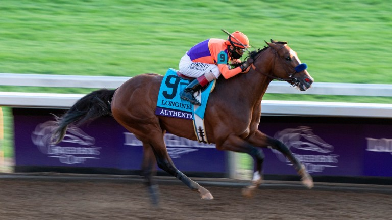 Authentic galloped to glory in Saturday's Breeders' Cup Classic