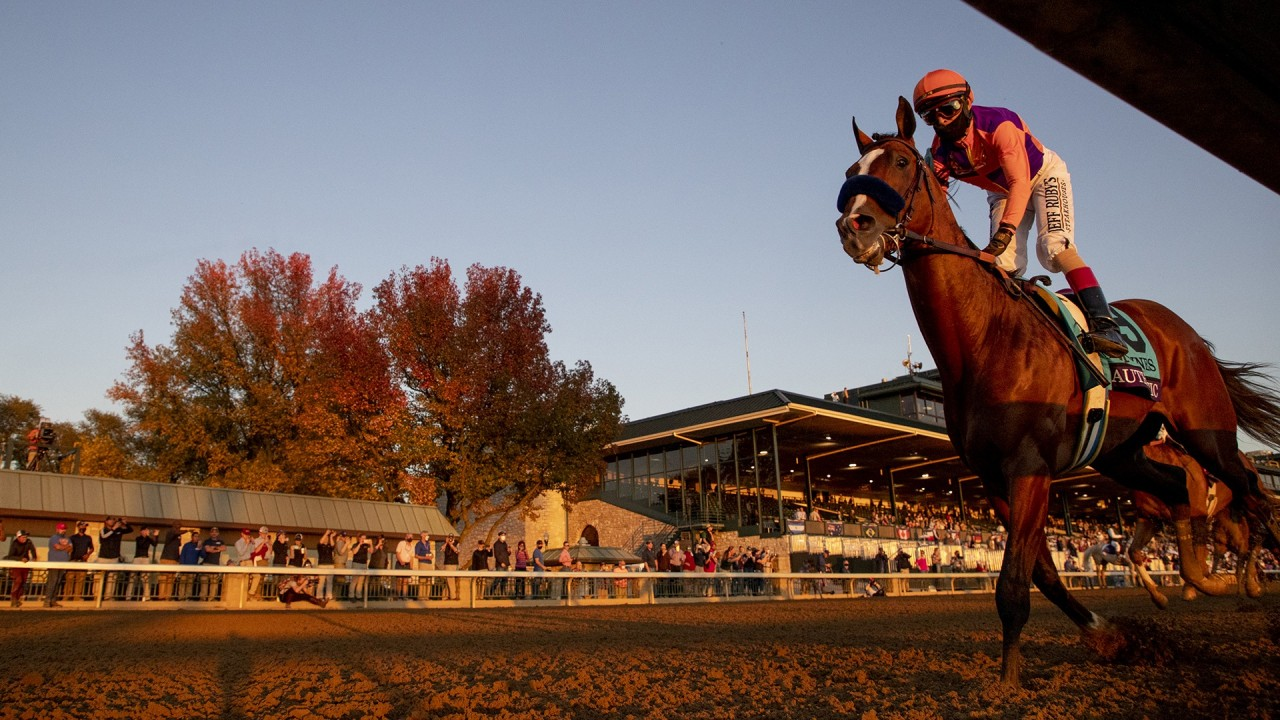 Racing post betting results kentucky bet on horse race online