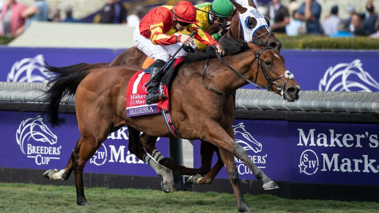 Iridessa (red) lands the Breeders' Cup Filly & Mare Turf