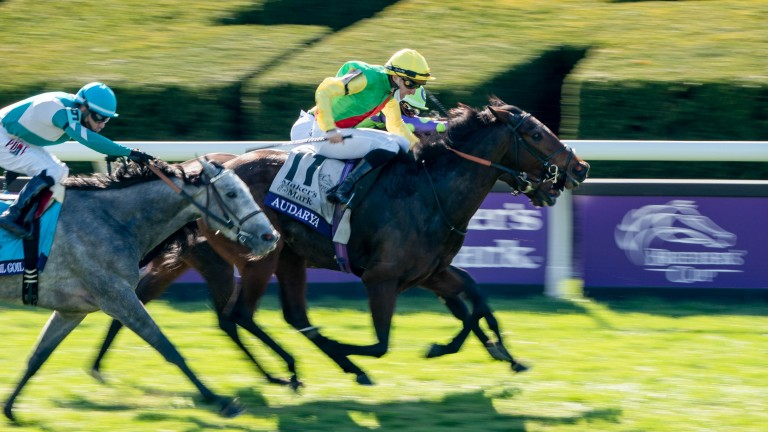 Audarya (yellow cap) wins the Breeders' Cup Filly & Mare Turf