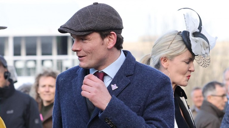 David Cottin enjoyed a landmark day at Auteuil on Sunday with Le Berry and Paul's Saga