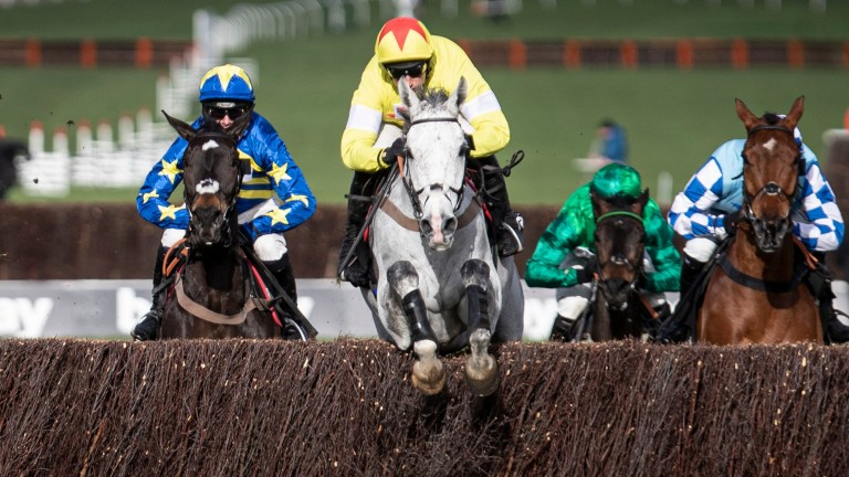 Politolgoue puts in another clean jump under Harry Skelton in the Champion Chase
