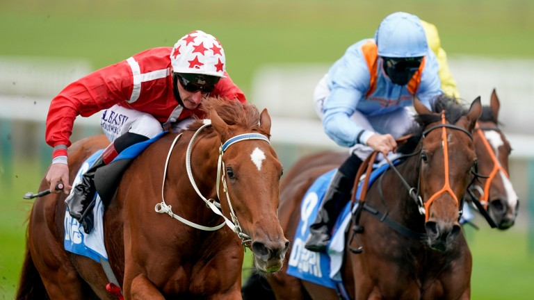 Saffron Beach (red): 1,000 Guineas runner-up steps up markedly in trip for Oaks test