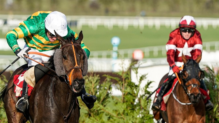 Easysland (left) and Tiger Roll reoppose at Cheltenham on Friday