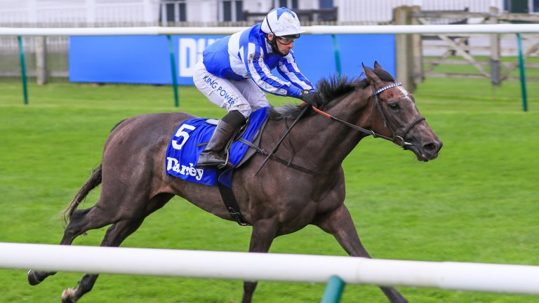 Angel Power: has not raced for 252 days